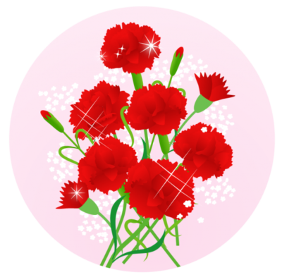 carnation05